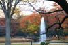 Autumn19s