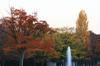 Autumn22s