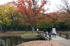 Autumn25s