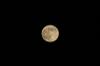 Moon07s